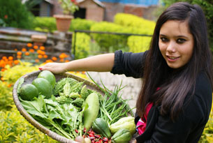 Salya with fresh vegetables of the garden